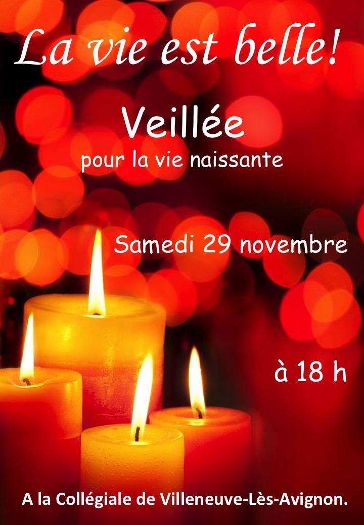 Veilleu0301e pour la vie 2014
