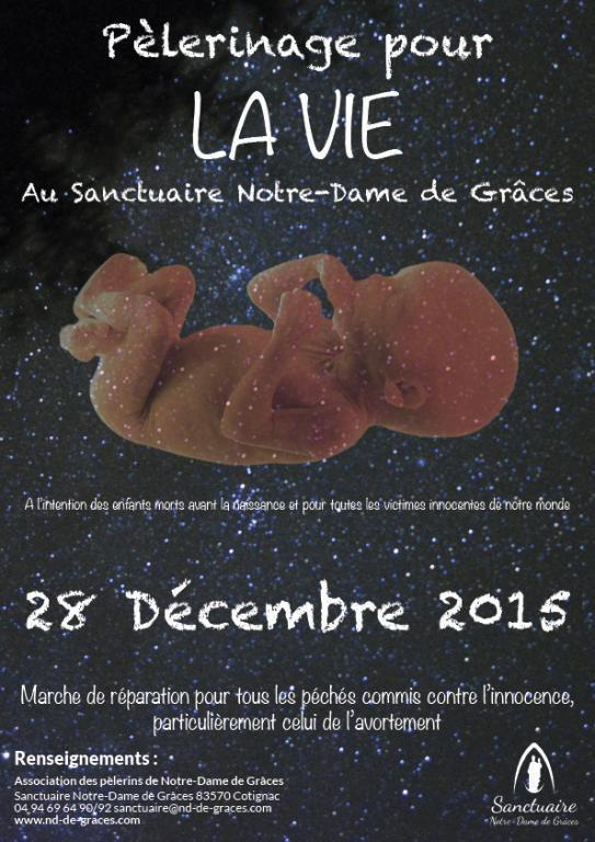 2015   28 12_peleVieAffiche